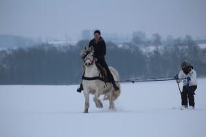 Skijöring mit Lissy